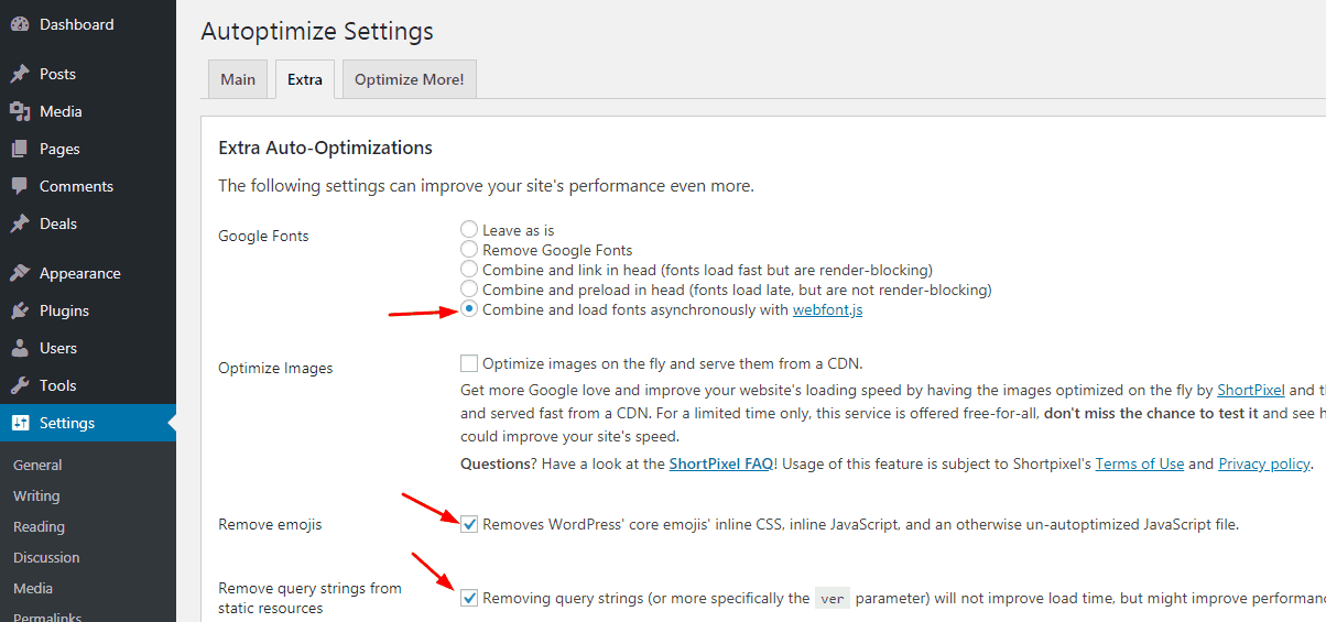 extra settings in autoptimize plugin