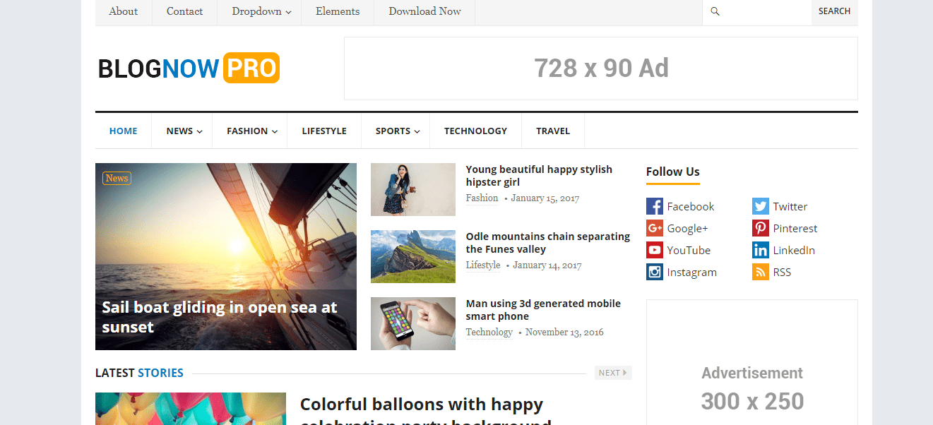 blognow wordpress theme