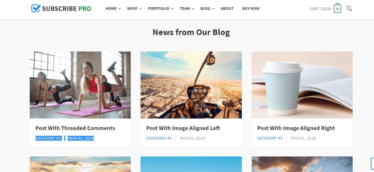 blog posts widget in subscribe theme