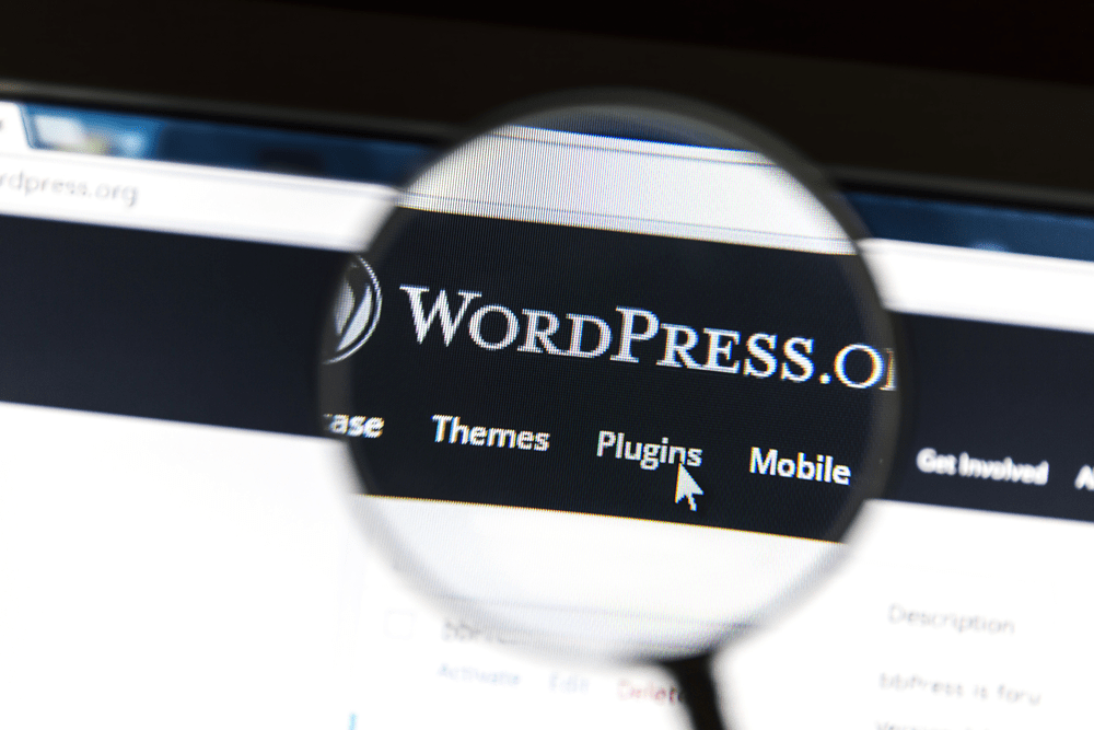 wordpress.org official website