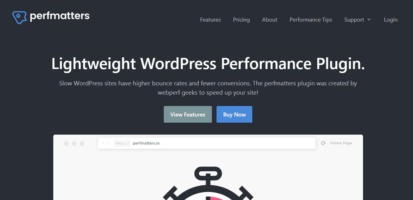 Perfmatters Review: WordPress Optimization Made Simple!