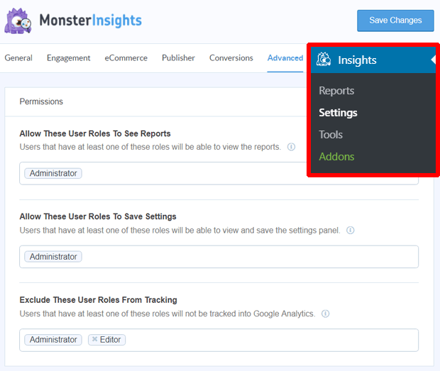 monsterinsights permissions